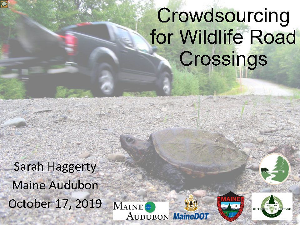 CoverFHA_CrowdsourcingForWildlifeRoadCrossings_101719+(2)